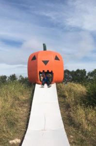 KC Pumpkin Patch